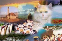 نقاط دیدنی و مناطق توریستی وان ترکیه