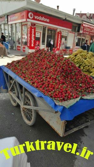 میوه فروش سیار در وان
