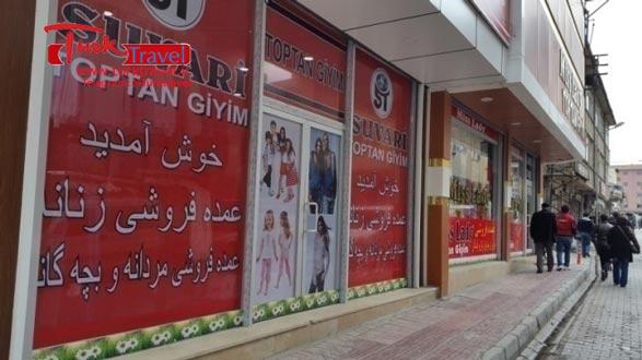 راهنمای فارسی زبان در وان ترکیه