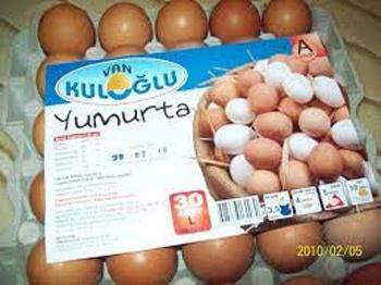 تخم مرغ در ترکی استانبولی