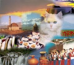 هزینه ایاب و ذهاب در ترکیه